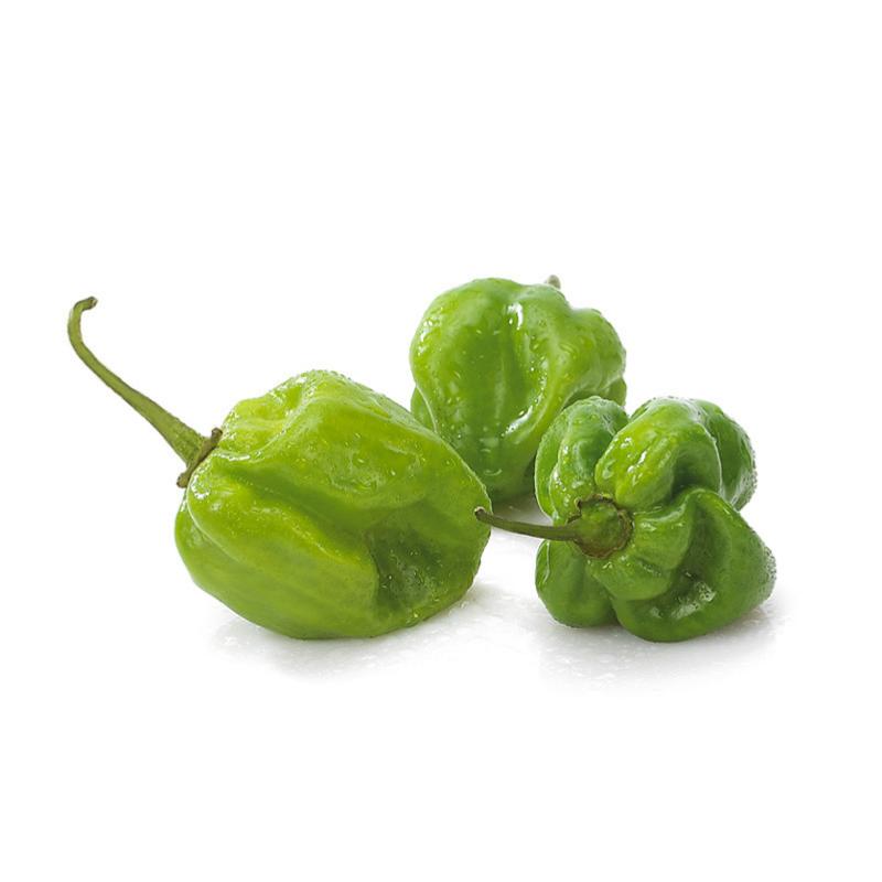 habanero verde peperocino piccante
